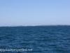 Freemantle to Rottnest Island-16