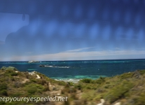 Rottnest Island bus ride-1