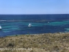 Rottnest Island bus ride -4