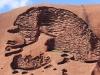 Uluru hike -20