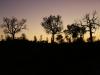 Uluru sunrise -5