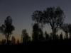 Uluru sunrise -8