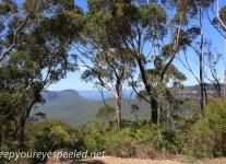 Katoomba Falls cascade hike (3 of 49)