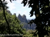Katoomba Falls cascade hike (21 of 49)
