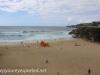 Austrlia Bondi Beach to Tamarama (14 of 18)