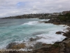 Austrlia Bondi Beach to Tamarama (5 of 18)