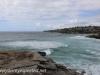 Austrlia Bondi Beach to Tamarama (9 of 18)