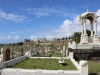 -Waverly Cemetery (10 of 22)