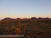 Kata Tjuta sunrise -27