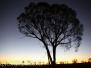 Australia Day Fourteen Uluru Kata Tjuta twilight February 17 2016