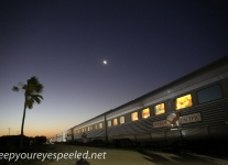 Indian Pacific Cook to Rawlinna -9