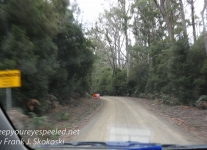Tasmania Bruny mountain road -1