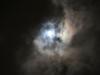 Hobart moonlight walk-8