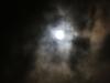 Hobart moonlight walk-9