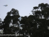 Katoomba Echo point (9 of 27)