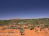 Uluru Desert Gardens hike -13