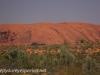 Uluru Desert Gardens hike -14