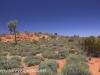 Uluru Desert Gardens hike -15