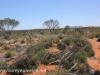 Uluru Desert Gardens hike -31