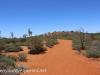 Uluru Desert Gardens hike -5