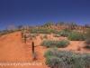 Uluru Desert Gardens hike -7