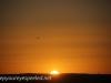 Australia Perth King's Park sunrise -4