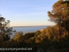 Australia Perth King's Park and Botanical gardens walk -10