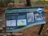 Australia Perth King's Park and Botanical gardens walk -9