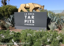 Los Angeles La brea tar pits (2 of 50)