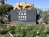 Los Angeles La brea tar pits (2 of 50)