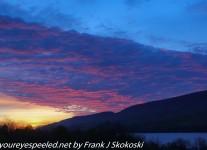 Bald-eagle-State-morning-hike-Nature-Inn-1-of-50