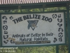 Belize zoo (4 of 24).jpg