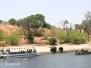 Botswana Chobe River cruise elephants October 17 2016