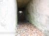 Crystal Ridge 22 mine shaft  (16 of 26)