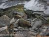 Crystal Ridge strip mine  (10 of 14)