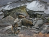 Crystal Ridge strip mine  (12 of 14)