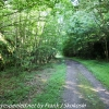 D-L-trail-hike-2-of-48