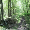 D-L-trail-hike-35-of-48
