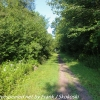 D-L-trail-hike-6-of-48