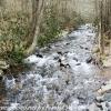 Drakes-Creek-11-of-36