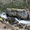 Drakes-Creek-17-of-36