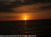 Fordia-Day-Eight-Venice-beach-and-sunset-6-of-21