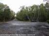 Key Largo back country hike  (11 of 40)