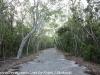 Key Largo back country hike  (12 of 40)