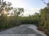 Key Largo back country hike  (14 of 40)