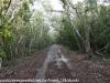 Key Largo back country hike  (18 of 40)