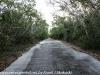 Key Largo back country hike  (4 of 40)