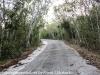 Key Largo back country hike  (8 of 40)