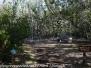 Florida Day Four: Key Largo John Pennekamp Coral Reef State Park April 14 2018