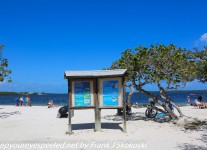 Fordia-Day-Four-Key-largo-John-Pennekamp-Coral-Reef-State-Park-1-of-19